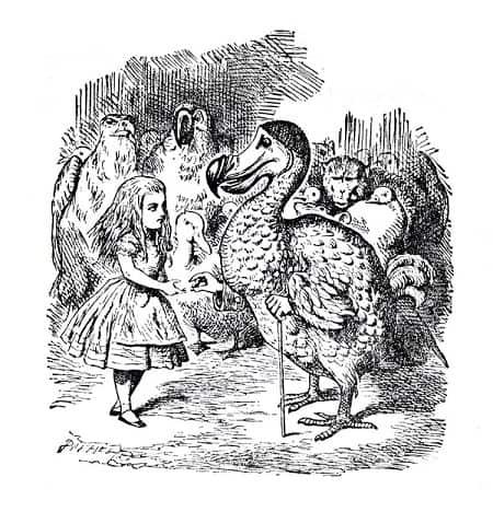 Goede relatietherapie dodo bird verdict